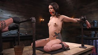Loads of wooden toys are used adjacent to make submissive whore Vanessa Vega groan